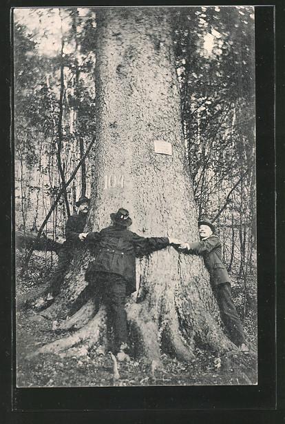 AK-Hohegeiss-die-dicken-Tannen-bei-der-Wolfsbachmuehle